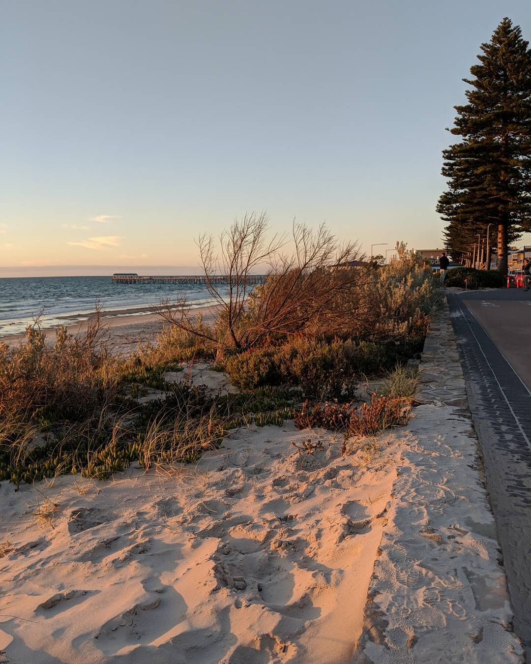 Henley Beach is the bacon of places  it makeshellip